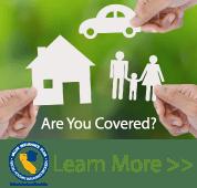 Ad for CAA Insurance